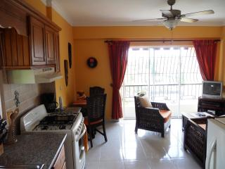 Santo Domingo Apartments-your home away from home - Santo Domingo vacation rentals