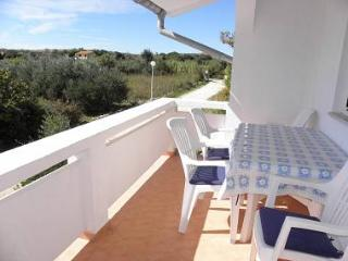 2706 A2(4+1) - Vir - Northern Dalmatia vacation rentals