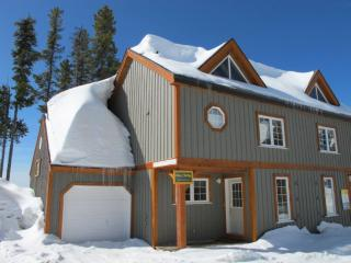 Alpine Timbers #6 ALPTMBR6 - Big White vacation rentals
