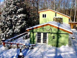 Camels Hump Cabin - Sugarbush-Mad River Valley Area vacation rentals