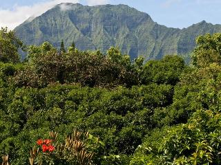 Waterfall, TreeTop, Bali Hai View - Walk to Beach! - Princeville vacation rentals