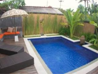Pool - Villa Bretani, Luxury in Sanur, Bali - Sanur - rentals