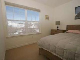 The Parkside Terrace - Durango vacation rentals