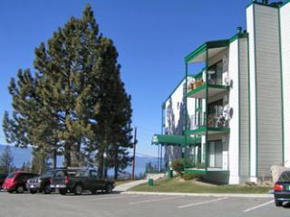 Gorgeous House with 1 Bedroom & 2 Bathroom in Lake Tahoe (074) - Lake Tahoe vacation rentals