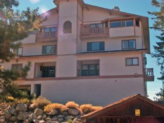 Great House with 3 Bedroom/3 Bathroom in Lake Tahoe (237a) - Lake Tahoe vacation rentals