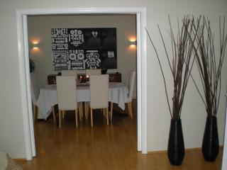 Bright, Spacious Apartment in Central Reykjavik - Reykjavik vacation rentals