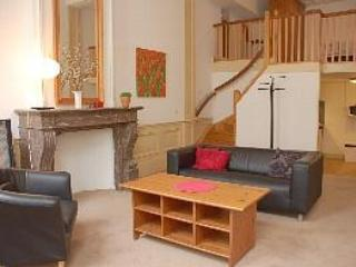 Living room with loft bedroom - Charming, Modern Apartment in Central Leiden - Leiden - rentals