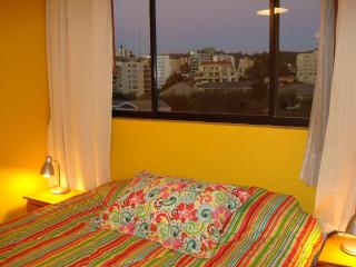 all you need in  Vina del Mar's best neighbourhood - Vina del Mar vacation rentals