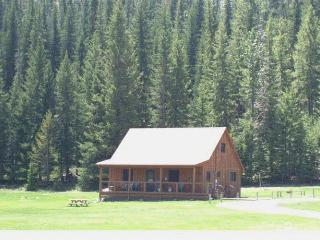 Vacation Home in the Heart of the Black Hills, SD - South Dakota vacation rentals