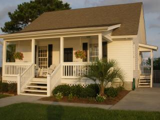 Water Front Cottage - Southern Georgia vacation rentals