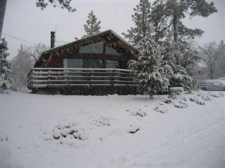 Sunny Cabin w/ Views-Near Lake & Slopes - Big Bear and Inland Empire vacation rentals