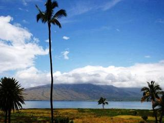 Kauhale Makai Oceanfront Complex with nice pool and hot tub. Great Rates!! - Kihei vacation rentals