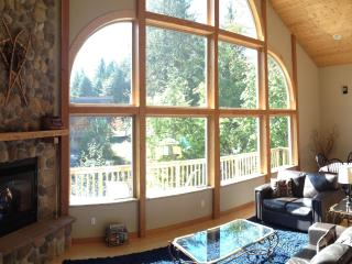 New Luxury Mountain Chalet Near Mt Baker, Air Hockey, Hot Tub, Fireplace, Mountain View - Glacier vacation rentals