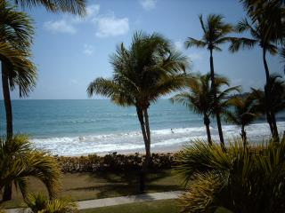 CRESCENT BEACH 267 - Humacao vacation rentals