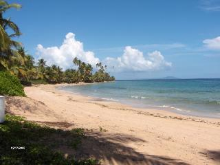CRESCENT BEACH 259 - Humacao vacation rentals