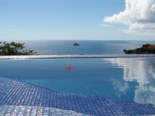 WV VLC - Saint Barthelemy vacation rentals
