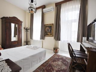 Spacious historical flat at the heart of Istanbul - Istanbul vacation rentals