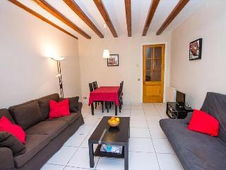 Modern Apartment in Barcelona Historic City Centre - Catalonia vacation rentals
