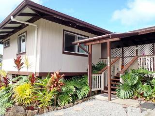 Lopaka's Family Lodge in Hilo - Hilo vacation rentals
