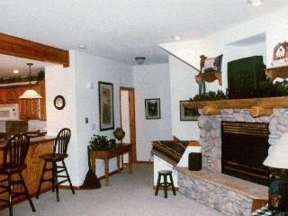Spacious 1600sq' townhm/ 2bd-3ba/ htd garage/views - Dillon vacation rentals