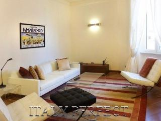 Very Large Bright Sleek Roman Apartment-Rigoletto - Rome vacation rentals