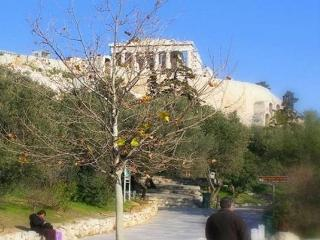SECLUDED HIDEAWAY IN THE HEART OF ANCIENT ATHENS - Schinias,marathon vacation rentals