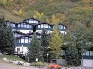SHADOW MOUNTAIN #18 - Aspen vacation rentals