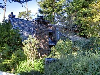 3095 - Distant Ocean View, Immaculate, Beautiful, Pet OK! - Pacific Grove vacation rentals