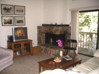 NO TAHOE Condo ,Close to NORTHSTAR,- & SKI RESORTS - California vacation rentals