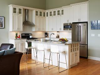 Save $20/nt lux 3 BR/2Bath Chicago Vacation Rental - Chicago vacation rentals