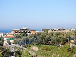 Caruso,situated in Sorrento Center, Panoramic View - Massa Lubrense vacation rentals