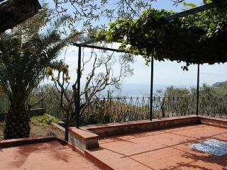 Villa Alfonsina,Wonderful View and big garden - Massa Lubrense vacation rentals