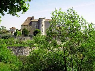 Chateau D'ax - Entire Estate - Bagat En Quercy vacation rentals