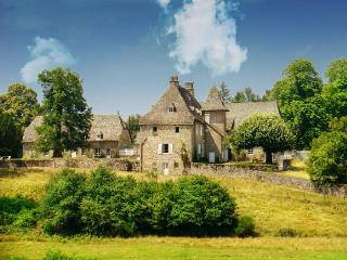 Chateau De Camiller Estate - Auvergne vacation rentals