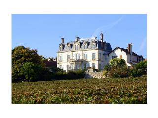 Chateau De Mercury - Burgundy vacation rentals