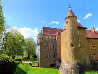 Chateau Aubepine - France vacation rentals