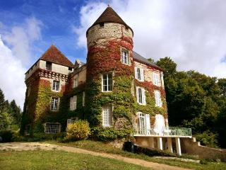 Chateau De Cheimeray - Loire Valley vacation rentals