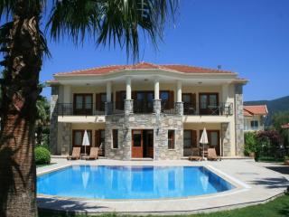 ZEYTIN KORU, large villa with Rock Tombs views - Mugla Province vacation rentals