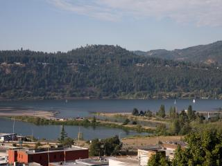 Gorgeous,  Modern, Luxurious in Hood River - Hood River vacation rentals