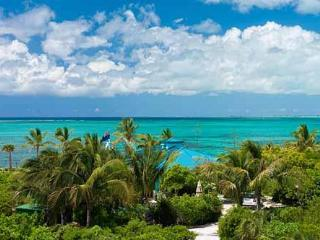 Conch Pearl - Beachfront Villa with Hot Tub - Providenciales vacation rentals