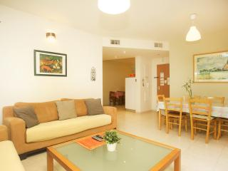 Raanana Luxury 3 BR + Balcony modern Apt (REF 02) - Ra'anana vacation rentals