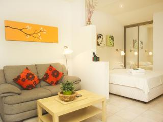 Raanana Luxury Studio Apt with garden - REF04 - Ra'anana vacation rentals