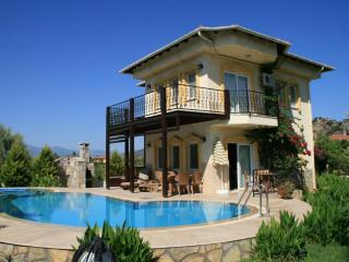 VILLA ORKIDE, pool and jacuzzi with Rock Tomb view - Aegean Region vacation rentals
