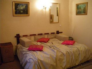 Charming apartment in  St.Petersburg city center - Russia vacation rentals