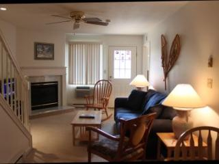 Two Bedroom Multi Level Condo 304 (304A) - Lincoln vacation rentals
