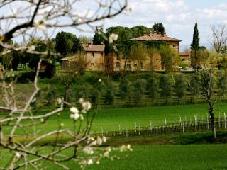 Casa Paterna, an elegant Tuscan/Umbrian retreat - Umbria vacation rentals