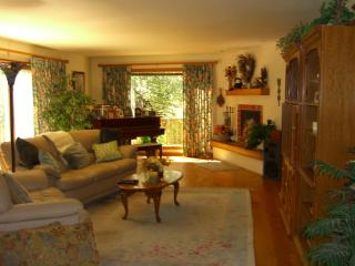 Beautiful Sun Valley / Ketchum, ID home for rent - Ketchum vacation rentals