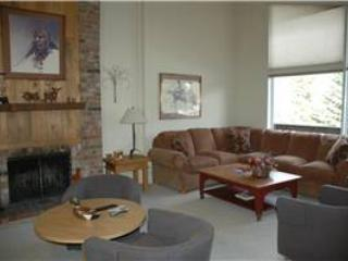 ALL SEASONS, G3 - Vail vacation rentals