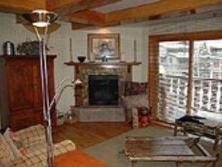 BRIDGE STREET LODGE, 201 - Vail vacation rentals