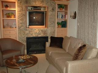 BRIDGE STREET LODGE, 308 - Vail vacation rentals